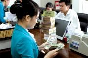 Gia hạn cho vay vốn bằng ngoại tệ đến hết năm 2018