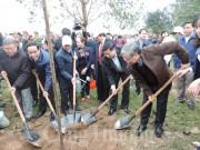 Sáu vạn cây xanh được trồng sau lễ phát động Tết trồng cây tại Bắc Ninh