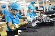 Phát động chương trình đánh giá doanh nghiệp bền vững tại Việt Nam năm 2018