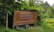 TransViet đề xuất kiến nghị quản lý du khách tới các vườn quốc gia