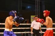 Các võ sĩ boxing hàng đầu Việt Nam tranh tài