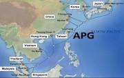 Tuyến cáp biển APG đã khôi phục dung lượng