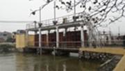 Trên 117.000 ha gieo cấy vụ Đông Xuân đã có nước