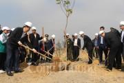 'Từng đồng chí, đồng bào, thanh niên, thiếu nhi cả nước hãy tham gia trồng cây, trồng rừng'