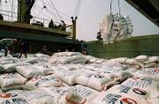 Bộ Công Thương lập đoàn xác minh thông tin báo chí nêu về tiêu cực trong xuất khẩu gạo