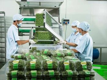 Xuất khẩu rau, quả sang Bắc Âu: Chú trọng thị trường ngách
