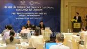 Họp báo trước phiên khai mạc Hội nghị SOM 1 APEC 2017