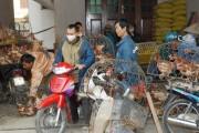 Ngăn chặn cúm A/H7N9 từ cửa khẩu
