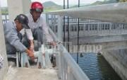 Bài học lớn từ vụ việc hồ Suối Vực - Phú Yên