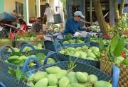 Xuất khẩu rau, quả- Lực đẩy từ thị trường khó tính