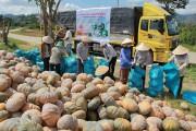 Nông dân phải được định hướng nuôi trồng