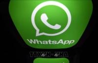 who ra mat chatbot chong tin gia tren whatsapp