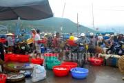 Người dân tự lập bến mới sau khi đóng cửa cảng cá Vĩnh Trường