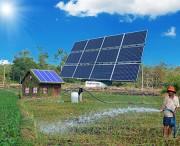 Ninh Thuận: Dự án điện mặt trời kết hợp sản xuất nông nghiệp