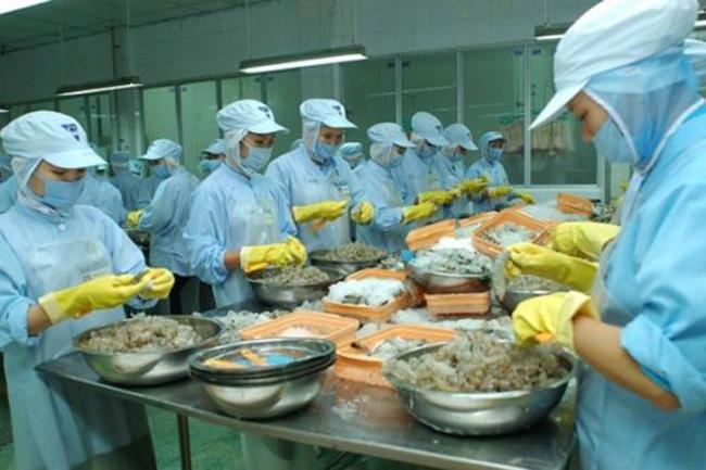 Đến năm 2020, 100% thủy sản tại Đà Nẵng được kê khai nguồn gốc