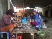 Báo động ô nhiễm môi trường từ các làng nghề Nghệ An