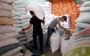 CPTPP: Thêm cơ hội cho gạo Việt