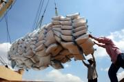 Xuất khẩu gạo 'bất ngờ vụt sáng' trong quý I