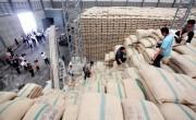 Xuất khẩu gạo: Đa dạng hóa thị trường để tránh rủi ro