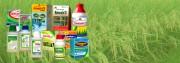 """Quy mô thị trường ngành thuốc bảo vệ thực vật ngày càng """"phình to"""""""