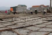 Nghệ An: Nỗ lực nâng tầm giá trị thủy hải sản