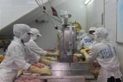 Xuất khẩu cá ngừ phục hồi mạnh