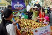 Nhiều hoạt động vui chơi, giải trí phục vụ thiếu nhi tại TP. Hồ Chí Minh