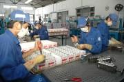 Hàng Việt Nam- Cạnh tranh bằng chất lượng