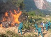 Cảnh Báo cháy rừng mùa khô