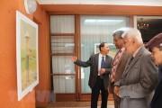 Triển lãm tranh về biển Việt Nam tại Nam Phi thu hút khách tham quan