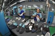 Việt Nam - Australia: Tận dụng ưu đãi từ AANZFTA
