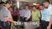 Đoàn liên ngành kiểm tra công tác đảm bảo an toàn thực phẩm tại Ninh Bình