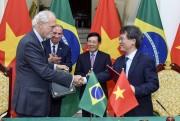Quan hệ hợp tác Việt Nam - Brazil phát triển tích cực