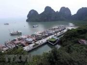 5 tỉnh, thành phố miền Trung đồng loạt ra quân bảo vệ môi trường biển