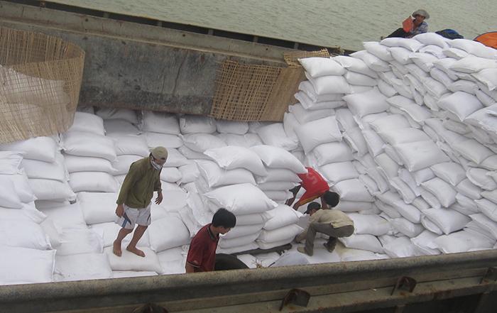 Xuất khẩu gạo: Cánh cửa đang rộng mở