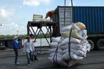 Phân bón nhập khẩu tăng- Doanh nghiệp chủ động gỡ khó