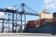 Khai trương Tuyến dịch vụ thương mại hàng hải Ấn Độ- châu Á đến cảng Cái Lân