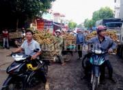 Thuận đường thông thương