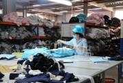 Nghệ An tăng cường tạo nguồn cung hàng xuất khẩu