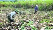Vận hội mới cho doanh nghiệp Việt – Lào