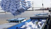 6 tháng đầu năm, xuất khẩu gạo sang Senegal sụt giảm