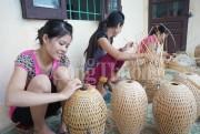 Trên 50% HTX ở Nghệ An hoạt động cầm chừng