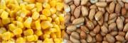 Algeria tạm ngừng nhập khẩu 24 mặt hàng thực phẩm và công nghiệp