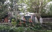 Bão số 2 đổ bộ vào Nghệ An, Hà Tĩnh nhiều thiệt hại nặng nề