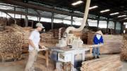 Khuyến công Quảng Ninh- Sát cánh cùng doanh nghiệp gỗ