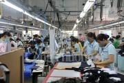 Kim ngạch xuất khẩu 7 tháng của Nghệ An tăng 26%