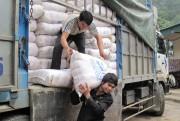 Đảm bảo cung ứng hàng hóa trong mùa mưa lũ