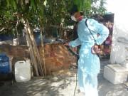 5 sai lầm chết người về bệnh sốt xuất huyết