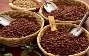 Algeria công bố chi tiết danh sách các mặt hàng tạm ngừng nhập khẩu