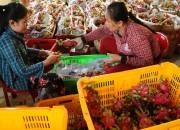 Khuyến công Bình Thuận: Bám sát tiến độ, hỗ trợ thực chất